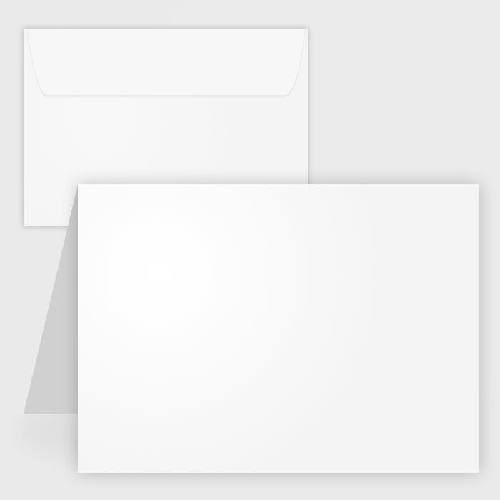 Blank cards greeting note cards in bulk case ream wholesale blank white matte note cards w envelopes 425x55 50pk m4hsunfo