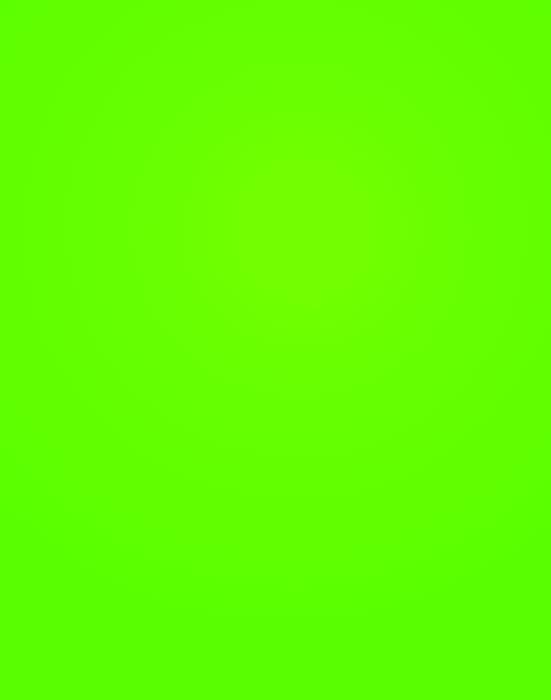poster board fluorescent neon green 23304w royal brites